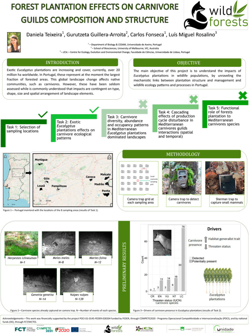 Forest Plantation Effects on Carnivore Guilds Composition and Structure